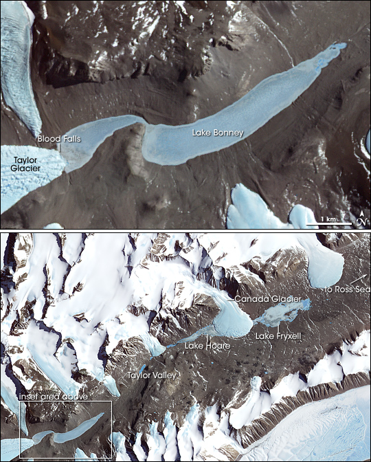 The McMurdo valleys in the Antarctica, near the coast. This system is usually free of snow and is extraordinarily dry. It could therefore be similar to certain Martian areas. Credits: NASA, Terra satellite and ASTER instrument.