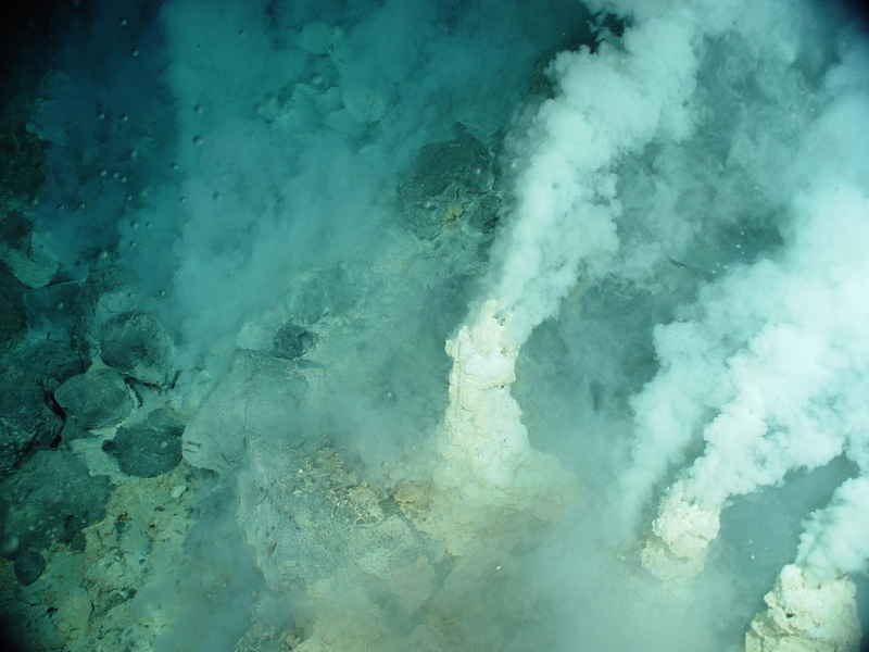 Deep-sea hydrothermal vents in the bottom of the mid-Atlantic ridge when methanogenic-based ecosystems thrive. Similar conditions may exist in the bottom of the ocean of Enceladus.  (NOAA Photo Library).