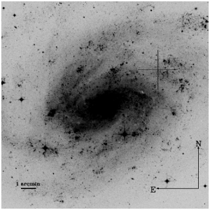 The nearby galaxy NGC300 (Digital Sky Survey). The position of the optical transient is marked by a cross.